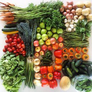 Veggies - Coachella Valley Certified Farmers Market