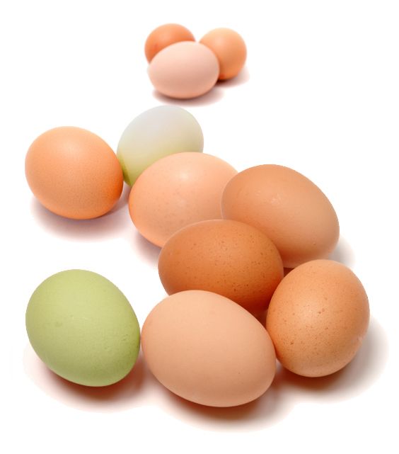 Fresh Pick of the Week: Eggs